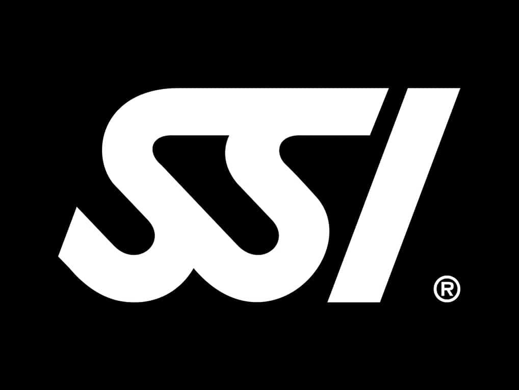 logo_0000s_0000_SSI-047