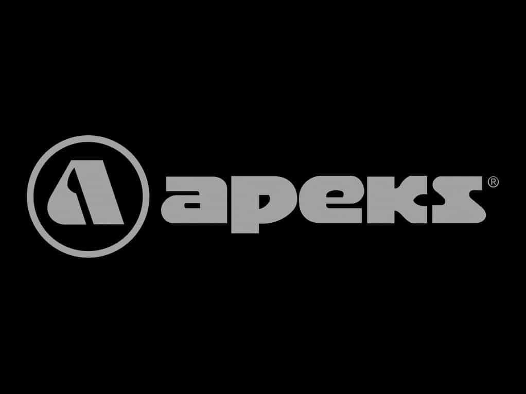 logo_0000s_0002_apeks