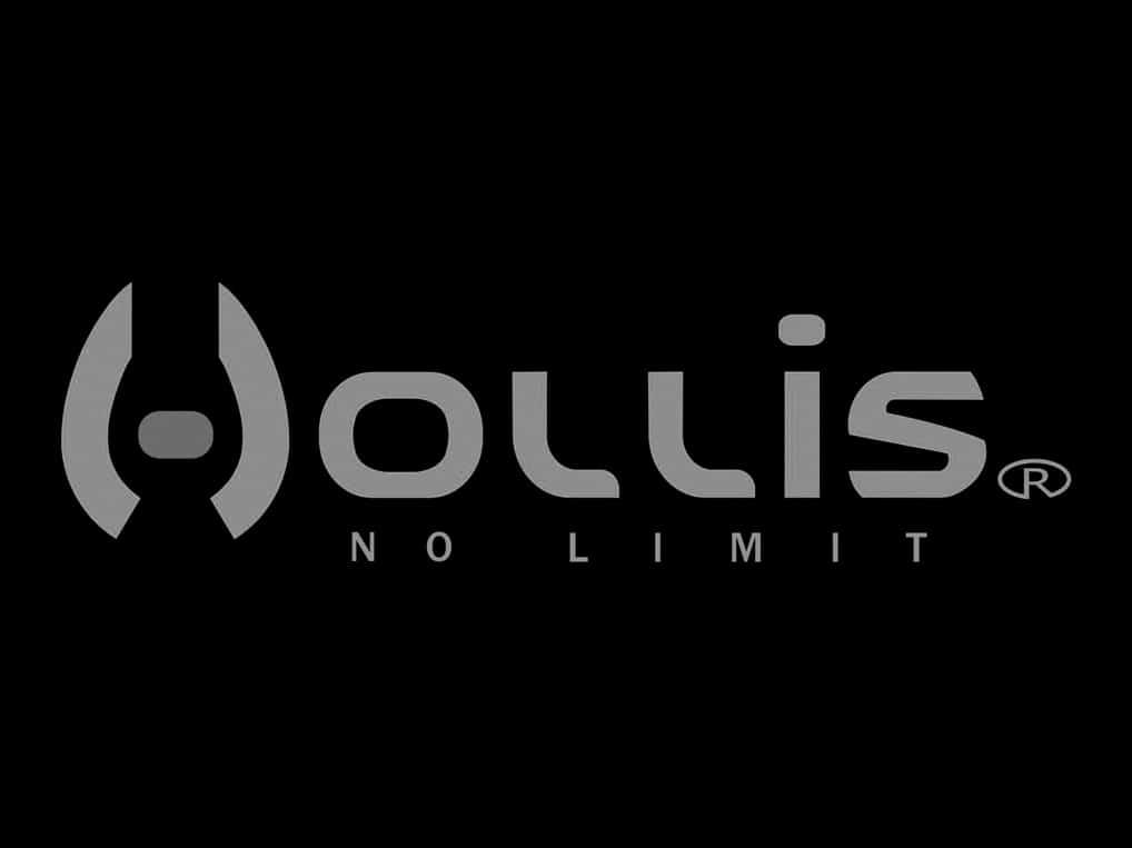 logo_0000s_0014_Hollis-logo